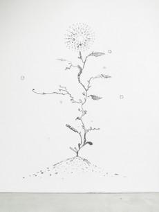 tn_浅井裕介11