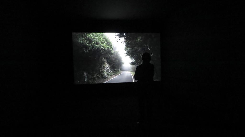 《精霊(ESPIRITU SANTO) #1》 暗室にプロジェクション、HD、6分(ループ)、カラー、サイレント 2013